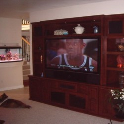 Custom entertainment center built into niche