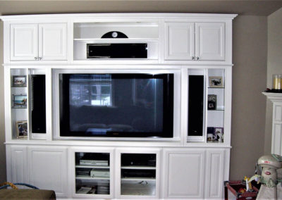 Custom wall unit in Lake Forest