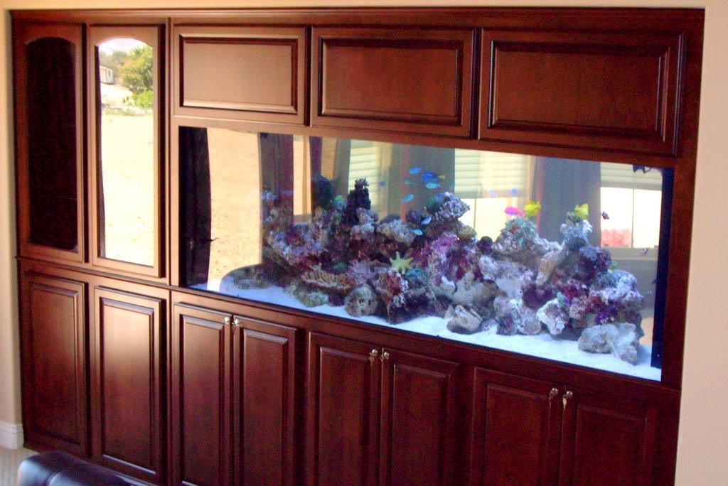 After Custom Aquarium Cabinet C Amp L Design Specialists Inc