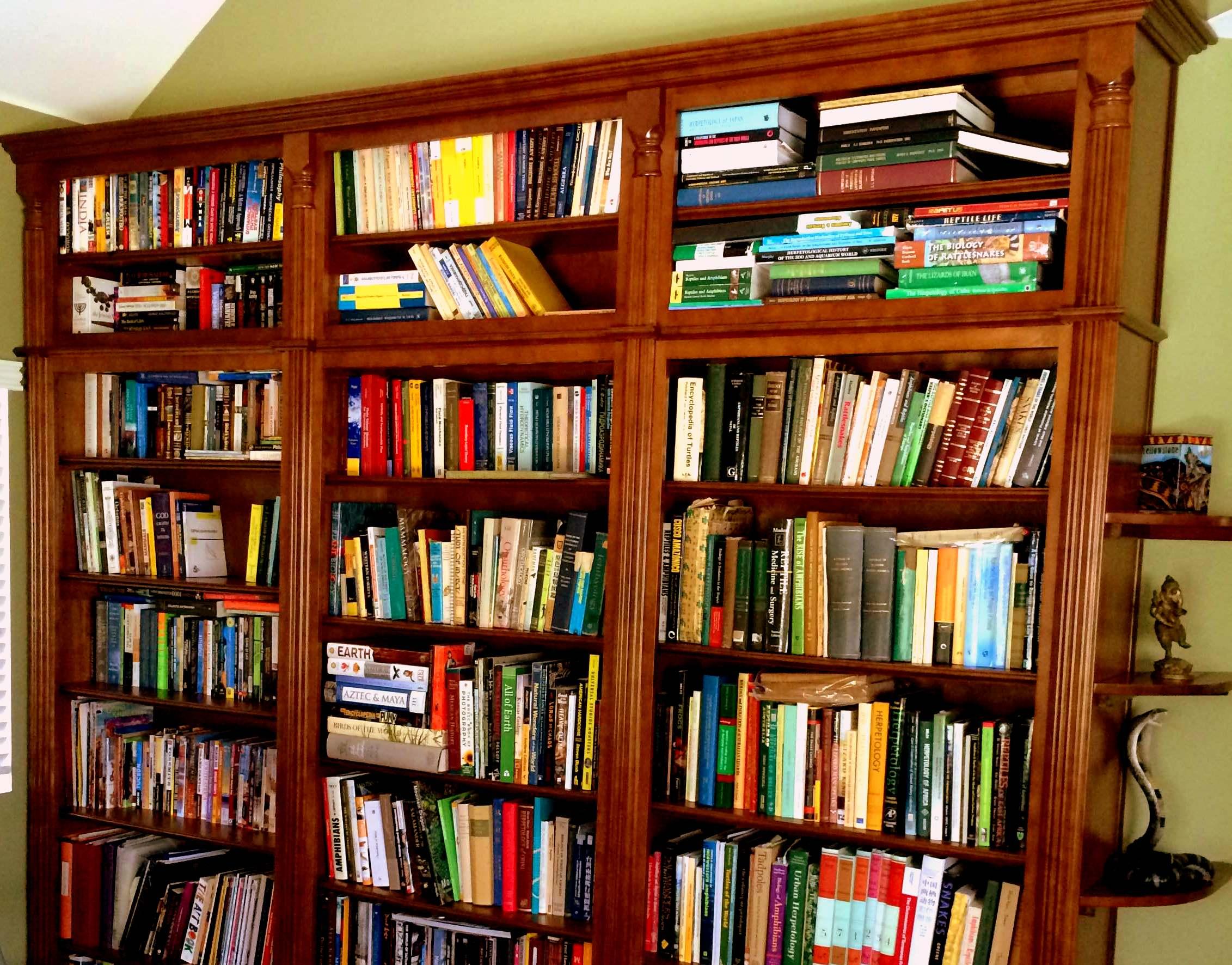 Custom built bookshelves store hundreds of books in this for Office design book