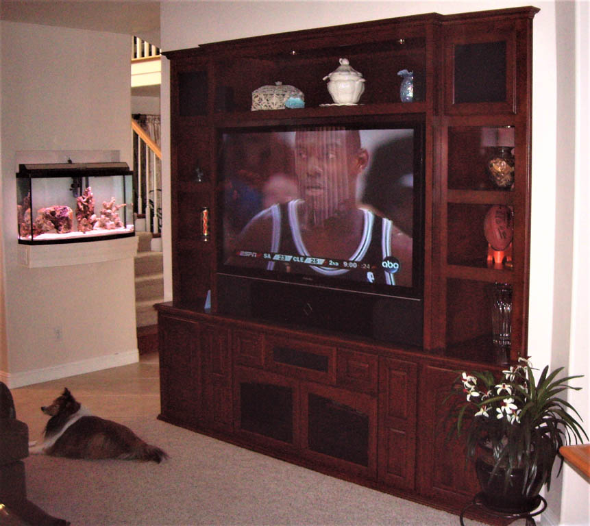 Kitchen Cabinets In Orange County: Custom Entertainment Centers